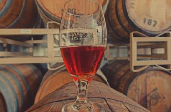 Maturação da cerveja: dicas de tempo e temperatura